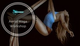Aerial Yoga Workshop - Octofit