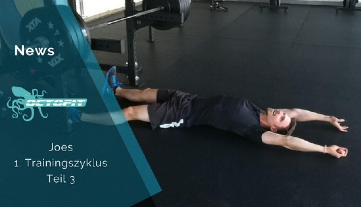 Joes 1 Trainingszyklus Teil 3 - Octofit