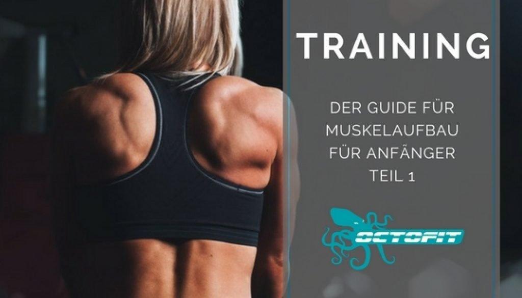 Der Guide für Muskelaufbau für Anfänger   Guide by Octofit