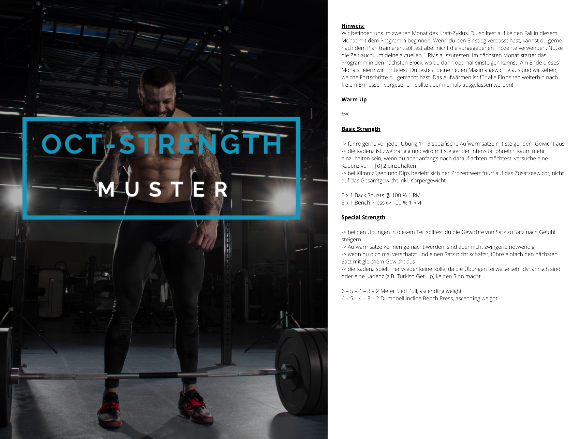 OCT-STRENGTH Muster Trainingsplan 3