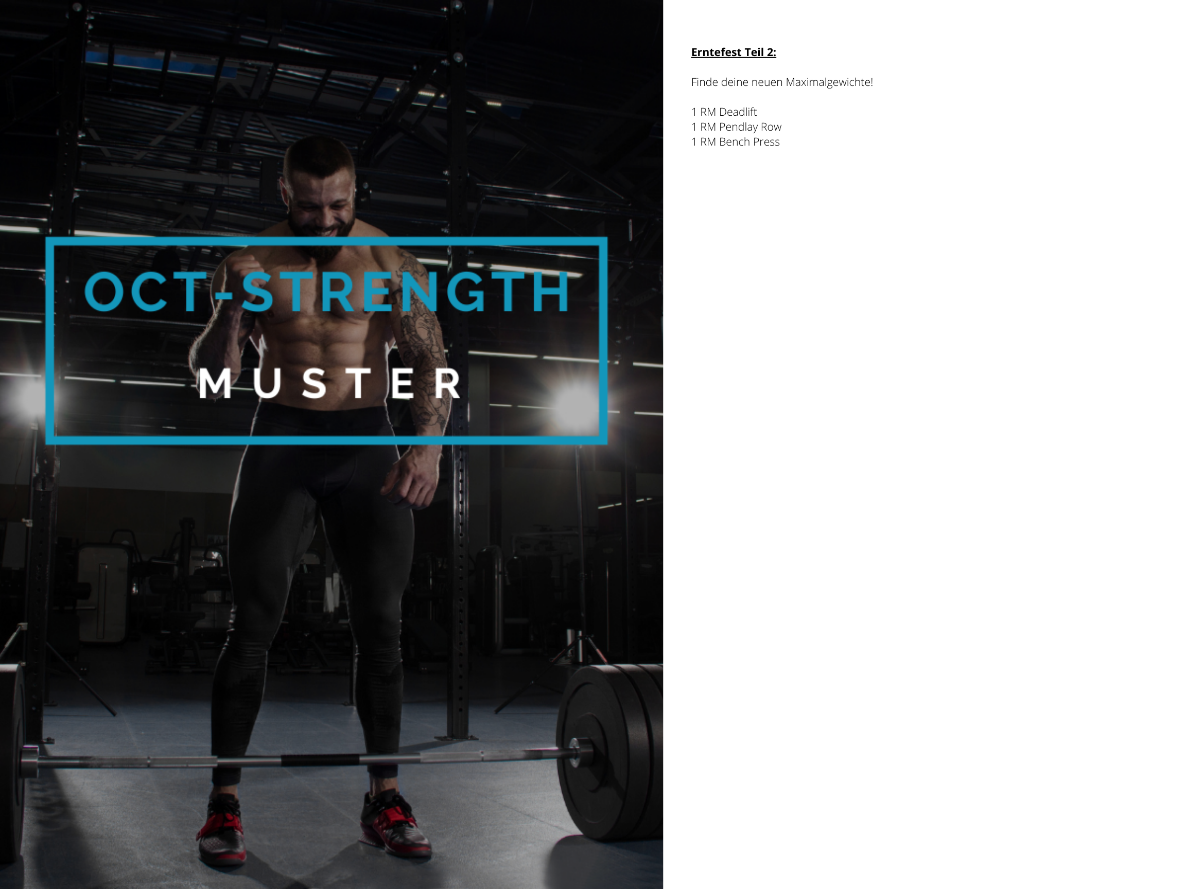 OCT-STRENGTH Muster Trainingsplan 4
