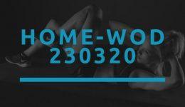 Octofit Home WOD 230320