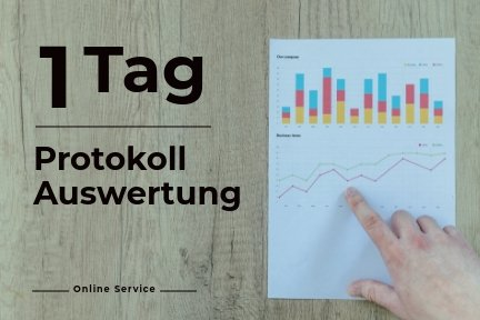 Octofit Shop Online Services 1 Tag Protokollauswertung